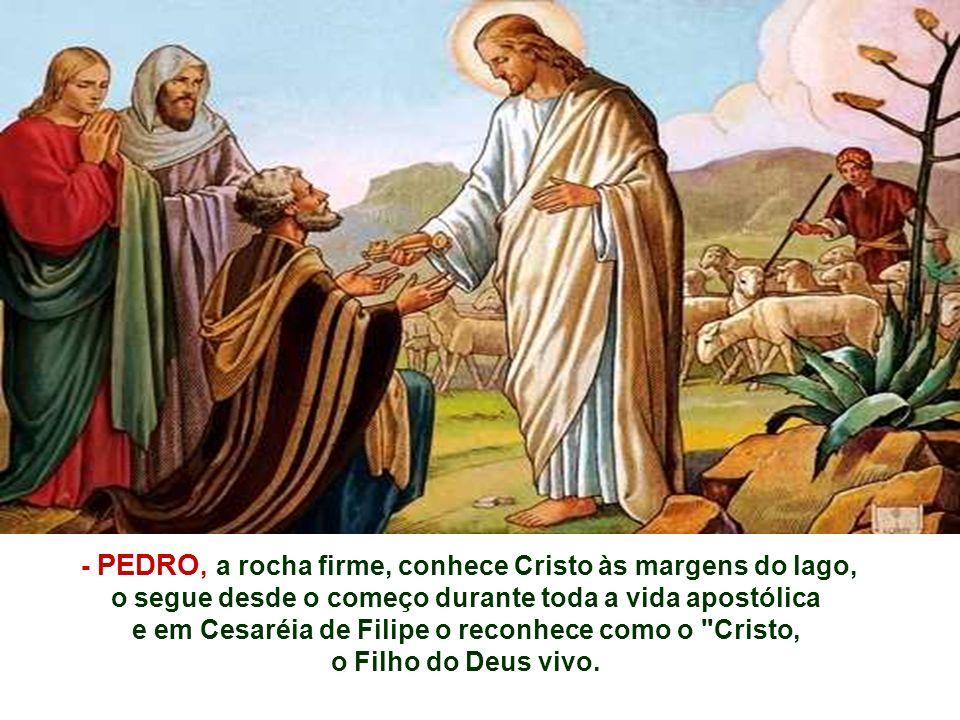 - PEDRO, a rocha firme, conhece Cristo às margens do lago, o segue desde o começo durante toda a vida apostólica e em Cesaréia de Filipe o reconhece como o Cristo, o Filho do Deus vivo.