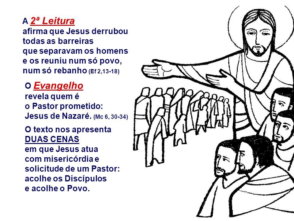 A Liturgia de hoje nos convida a celebrar a COMPAIXÃO do Bom Pastor, ao conduzir o seu rebanho... Na 1ª Leitura, Jeremias denuncia os governantes do s