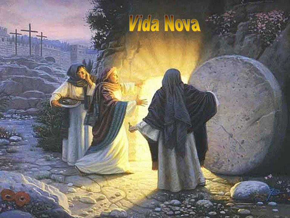 TODO DOMINGO, na celebração da Eucaristia, deve ser um momento forte da vivência dessa Páscoa que parece não ter fim...