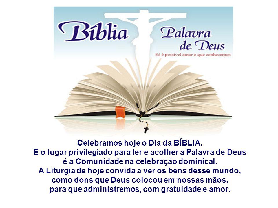Celebramos hoje o Dia da BÍBLIA.