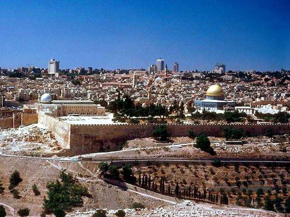 No Evangelho, temos o Discurso Escatológico, em que aparecem três momentos da História da Salvação: A destruição de Jerusalém, o tempo da Missão da Igreja e a Vinda do Filho do Homem.