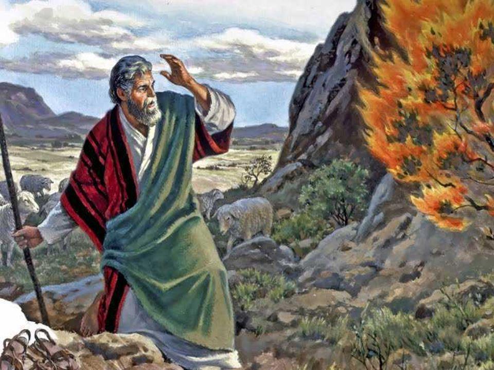 Será que já não estamos esgotando a paciência de Deus.