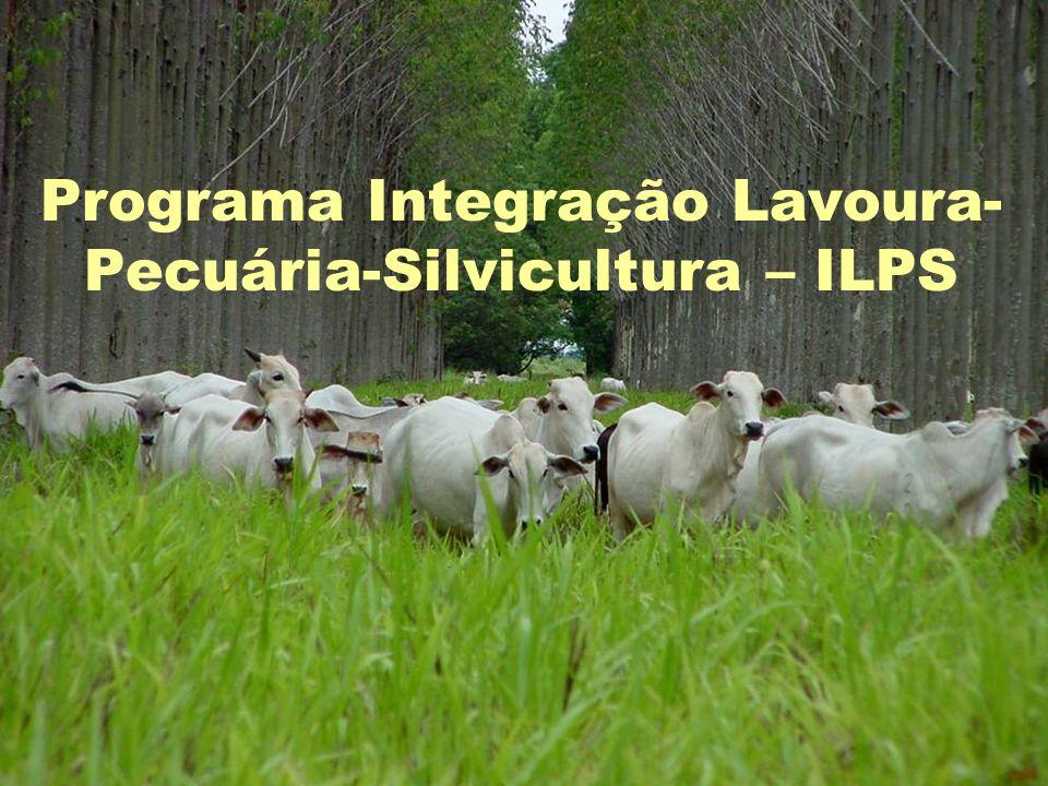 Programa Integração Lavoura- Pecuária-Silvicultura – ILPS