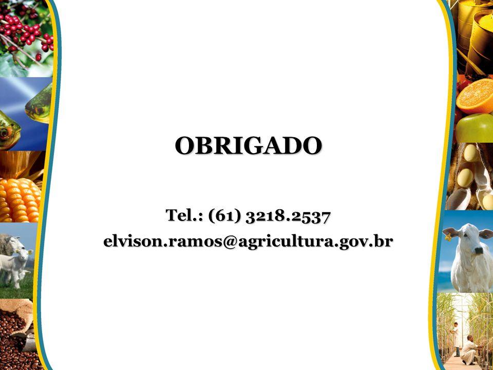 OBRIGADO Tel.: (61) 3218.2537 elvison.ramos@agricultura.gov.br