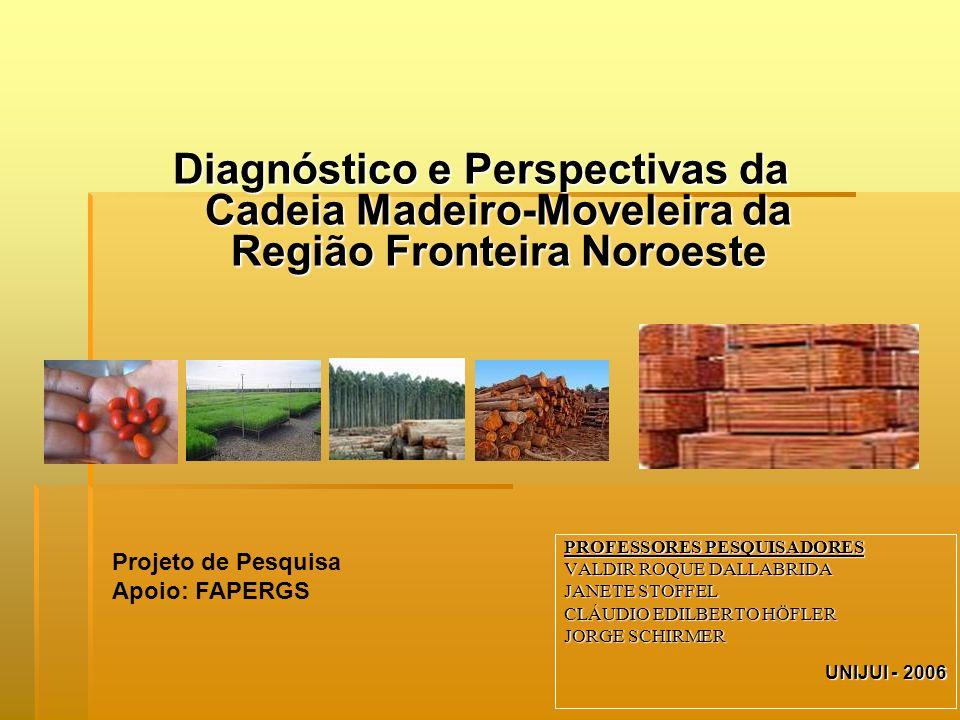 PROFESSORES PESQUISADORES VALDIR ROQUE DALLABRIDA JANETE STOFFEL CLÁUDIO EDILBERTO HÖFLER JORGE SCHIRMER UNIJUI - 2006 Diagnóstico e Perspectivas da C