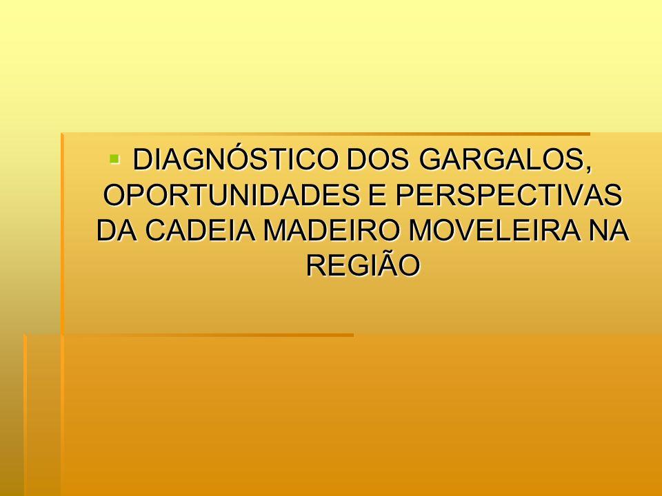 DIAGNÓSTICO DOS GARGALOS, OPORTUNIDADES E PERSPECTIVAS DA CADEIA MADEIRO MOVELEIRA NA REGIÃO DIAGNÓSTICO DOS GARGALOS, OPORTUNIDADES E PERSPECTIVAS DA