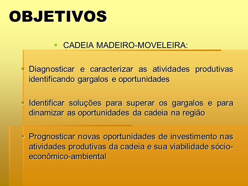 OBJETIVOS CADEIA MADEIRO-MOVELEIRA: CADEIA MADEIRO-MOVELEIRA: Diagnosticar e caracterizar as atividades produtivas identificando gargalos e oportunida