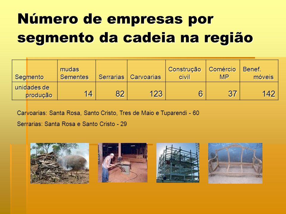 Número de empresas por segmento da cadeia na região SegmentomudasSementesSerrariasCarvoarias Construção civil Comércio MP Benef. móveis unidades de pr