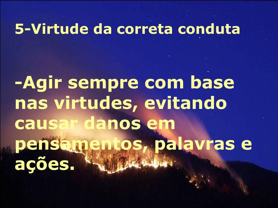 5-Virtude da correta conduta -Agir sempre com base nas virtudes, evitando causar danos em pensamentos, palavras e ações.