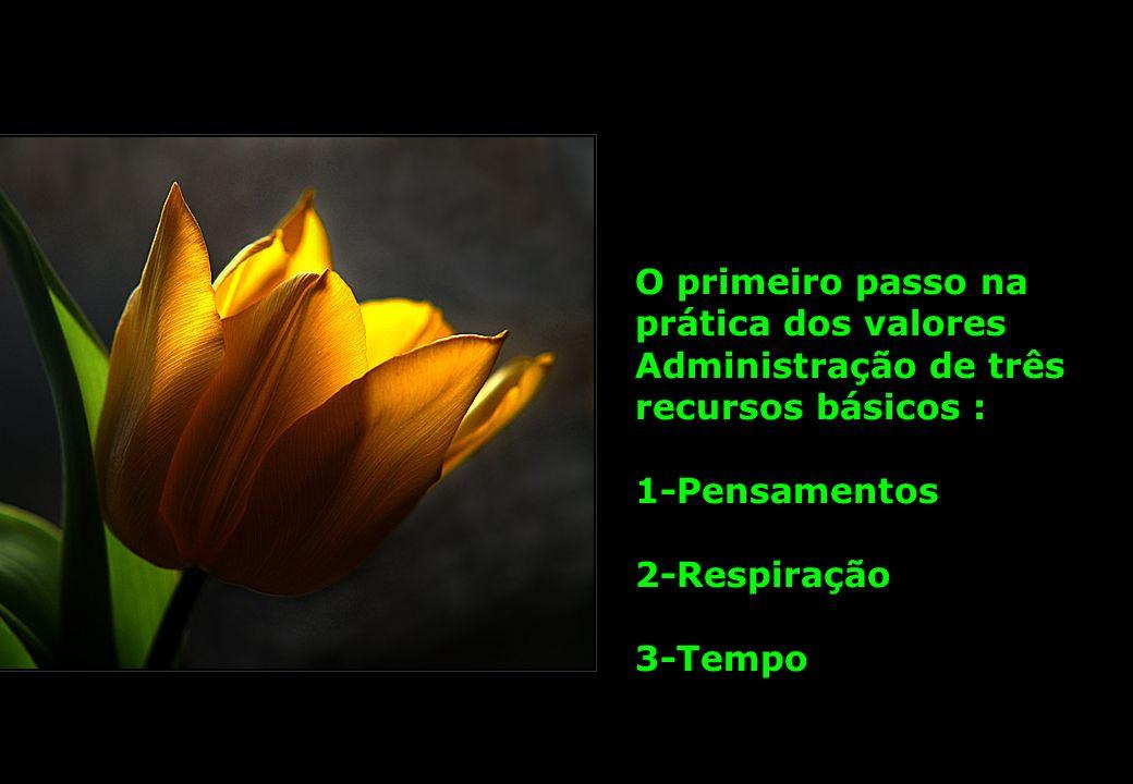 O primeiro passo na prática dos valores Administração de três recursos básicos : 1-Pensamentos 2-Respiração 3-Tempo