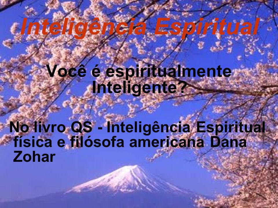 O que é inteligência espiritual.