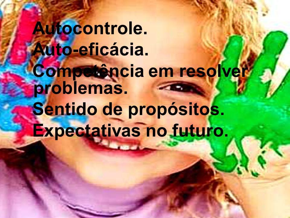 Autocontrole. Auto-eficácia. Competência em resolver problemas. Sentido de propósitos. Expectativas no futuro.