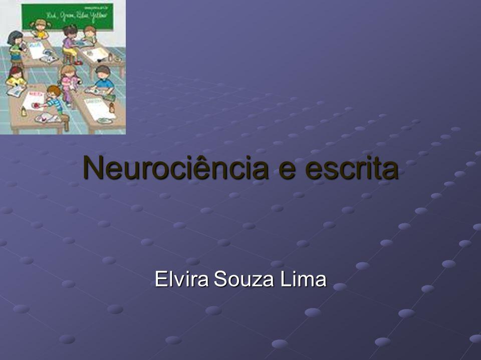 Este texto discorre sobre o ato de escrever, utilizando como referência o conhecimento disponibilizado pela neurociência.