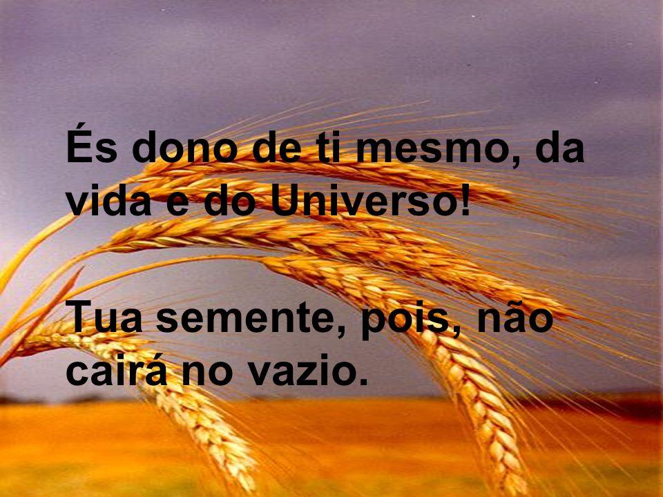 És dono de ti mesmo, da vida e do Universo! Tua semente, pois, não cairá no vazio.