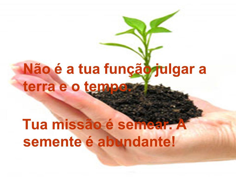 Não é a tua função julgar a terra e o tempo. Tua missão é semear. A semente é abundante!