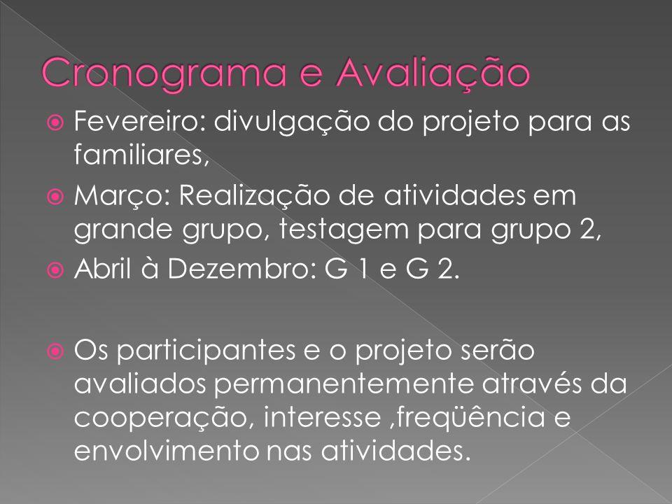 Fevereiro: divulgação do projeto para as familiares, Março: Realização de atividades em grande grupo, testagem para grupo 2, Abril à Dezembro: G 1 e G