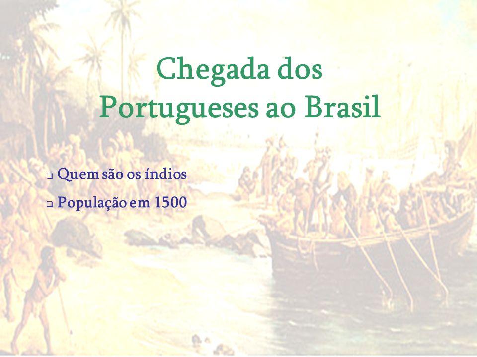 Chegada dos Portugueses ao Brasil Quem são os índios População em 1500