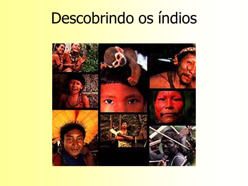 Descobrindo os índios