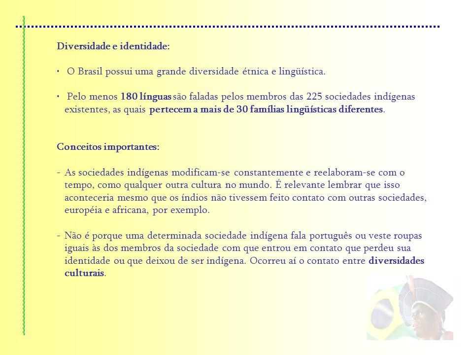 Diversidade e identidade: O Brasil possui uma grande diversidade étnica e lingüística. Pelo menos 180 línguas são faladas pelos membros das 225 socied