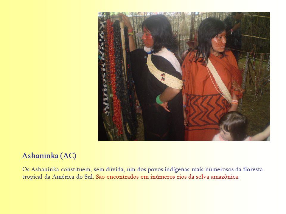 Os Ashaninka constituem, sem dúvida, um dos povos indígenas mais numerosos da floresta tropical da América do Sul. São encontrados em inúmeros rios da