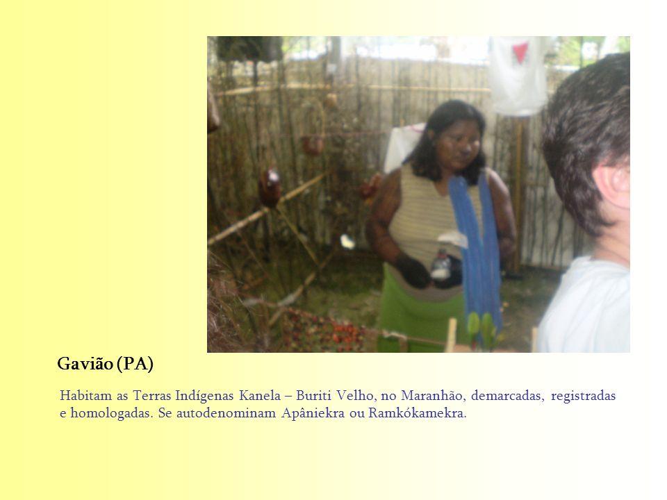 Habitam as Terras Indígenas Kanela – Buriti Velho, no Maranhão, demarcadas, registradas e homologadas. Se autodenominam Apâniekra ou Ramkókamekra. Gav