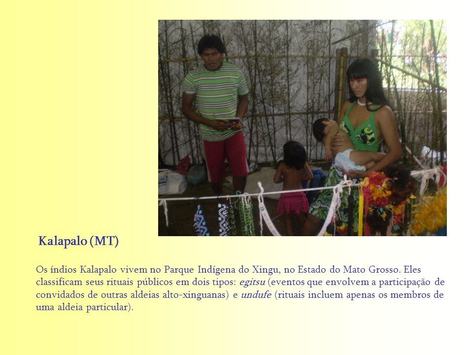Os índios Kalapalo vivem no Parque Indígena do Xingu, no Estado do Mato Grosso. Eles classificam seus rituais públicos em dois tipos: egitsu (eventos