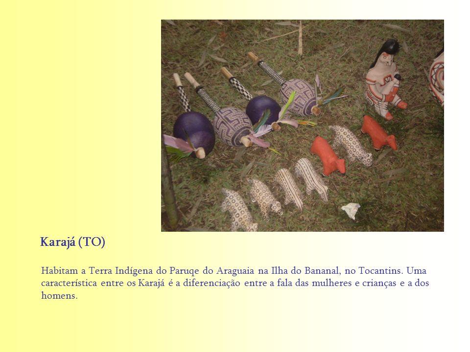 Habitam a Terra Indígena do Paruqe do Araguaia na Ilha do Bananal, no Tocantins. Uma característica entre os Karajá é a diferenciação entre a fala das