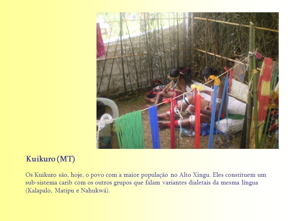 Os Kuikuro são, hoje, o povo com a maior população no Alto Xingu. Eles constituem um sub-sistema carib com os outros grupos que falam variantes dialet