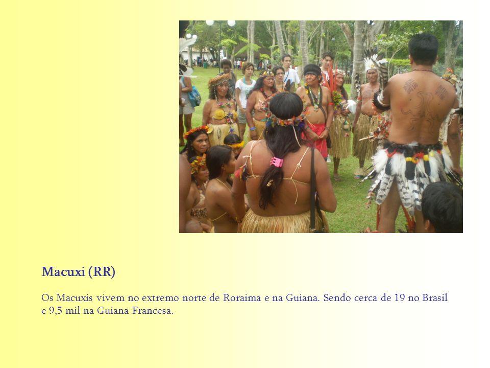 Os Macuxis vivem no extremo norte de Roraima e na Guiana. Sendo cerca de 19 no Brasil e 9,5 mil na Guiana Francesa. Macuxi (RR)
