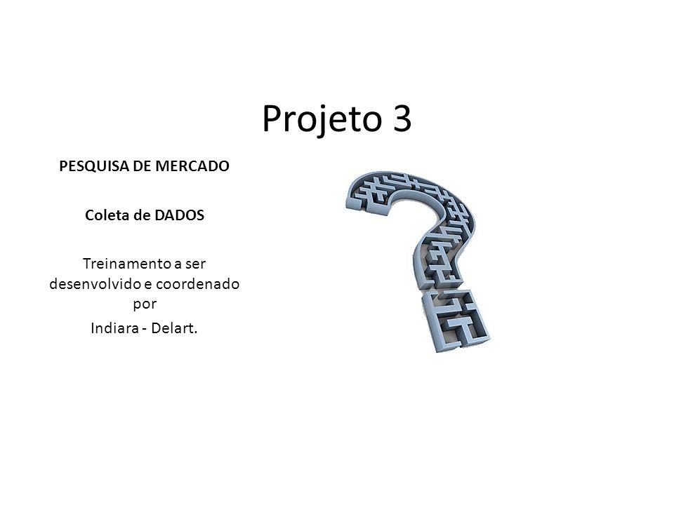 Projeto 3 PESQUISA DE MERCADO Coleta de DADOS Treinamento a ser desenvolvido e coordenado por Indiara - Delart.