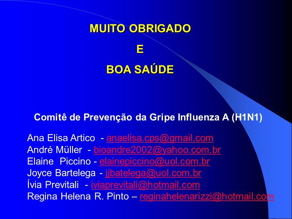 Comitê de Prevenção da Gripe Influenza A (H1N1) Ana Elisa Artico - anaelisa.cps@gmail.comanaelisa.cps@gmail.com André Müller - bioandre2002@yahoo.com.