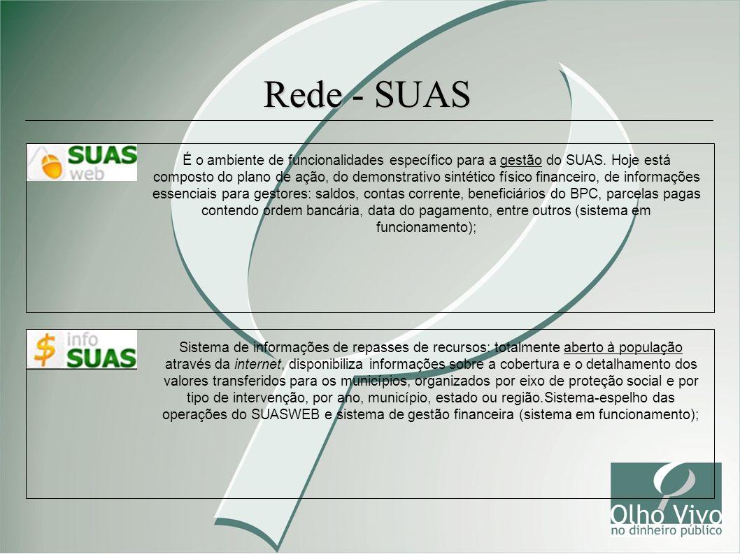 Rede - SUAS É o ambiente de funcionalidades específico para a gestão do SUAS. Hoje está composto do plano de ação, do demonstrativo sintético físico f
