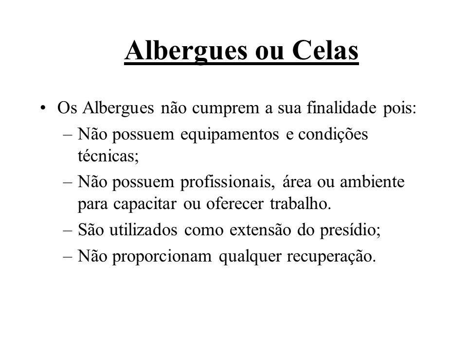 Albergues ou Celas Os Albergues não cumprem a sua finalidade pois: –Não possuem equipamentos e condições técnicas; –Não possuem profissionais, área ou