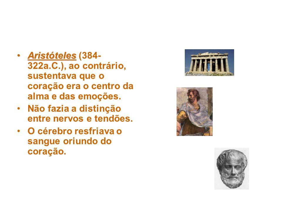 AristótelesAristóteles (384- 322a.C.), ao contrário, sustentava que o coração era o centro da alma e das emoções.