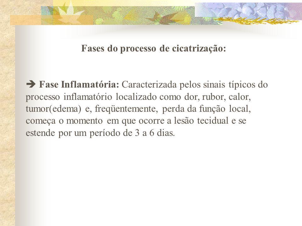 Fases do processo de cicatrização: Fase Inflamatória: Caracterizada pelos sinais típicos do processo inflamatório localizado como dor, rubor, calor, t