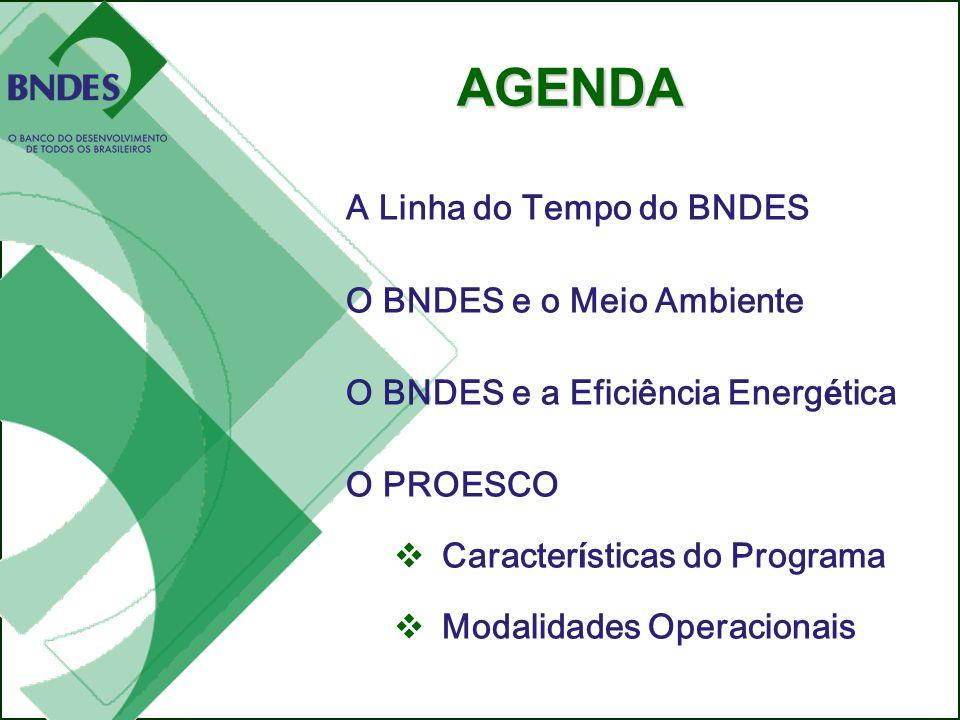O PROESCO e as formas de viabilizar os projetos de eficiência energética Eduardo Bandeira de Mello Chefe do Departamento de Meio Ambiente do BNDES A L