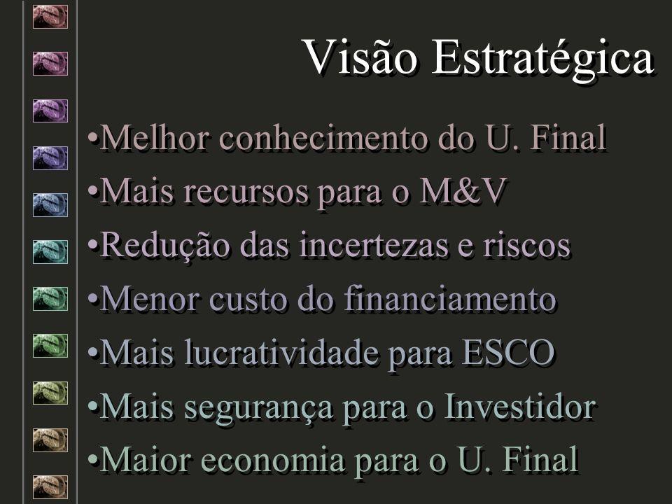 Visão Estratégica Melhor conhecimento do U. Final Mais recursos para o M&V Redução das incertezas e riscos Menor custo do financiamento Mais lucrativi