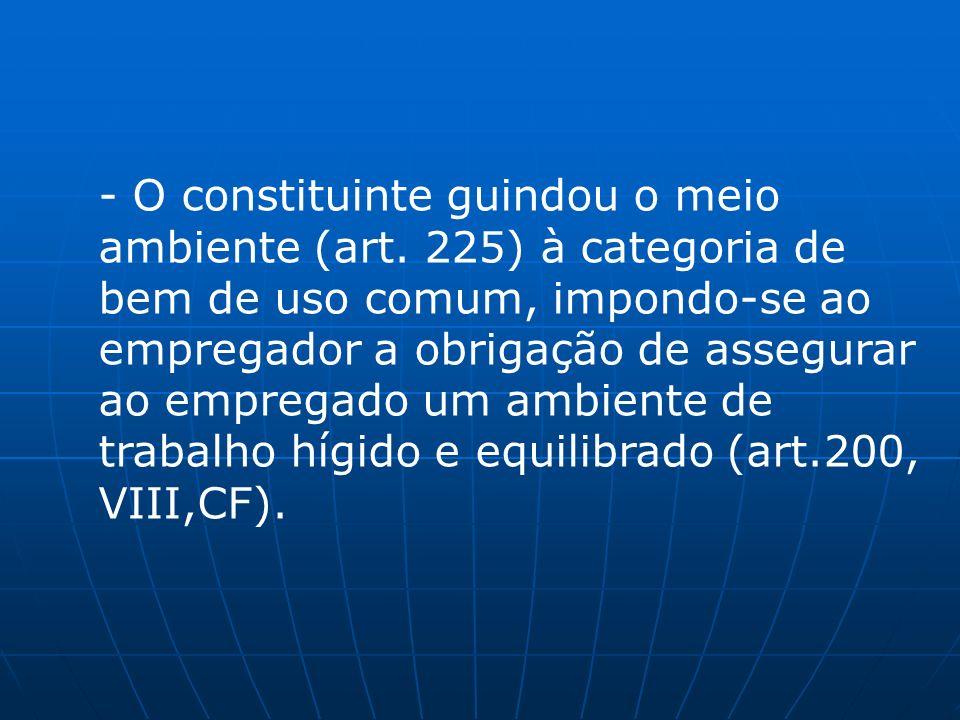 - O constituinte guindou o meio ambiente (art. 225) à categoria de bem de uso comum, impondo-se ao empregador a obrigação de assegurar ao empregado um