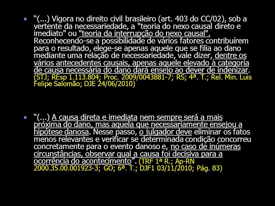 (...) Vigora no direito civil brasileiro (art. 403 do CC/02), sob a vertente da necessariedade, a