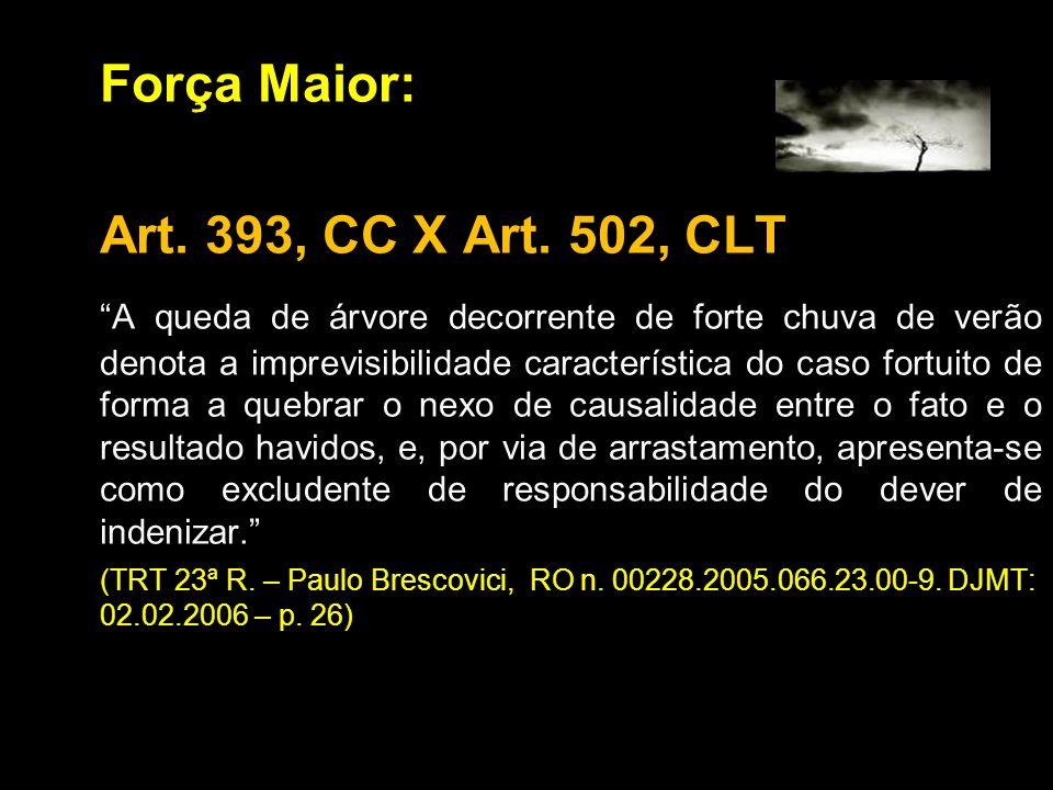 Força Maior: Art. 393, CC X Art. 502, CLT A queda de árvore decorrente de forte chuva de verão denota a imprevisibilidade característica do caso fortu