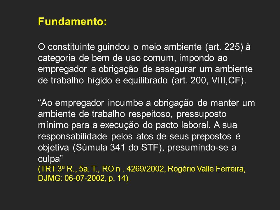 Fundamento: O constituinte guindou o meio ambiente (art. 225) à categoria de bem de uso comum, impondo ao empregador a obrigação de assegurar um ambie