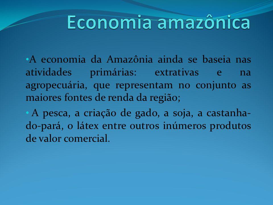 A economia da Amazônia ainda se baseia nas atividades primárias: extrativas e na agropecuária, que representam no conjunto as maiores fontes de renda