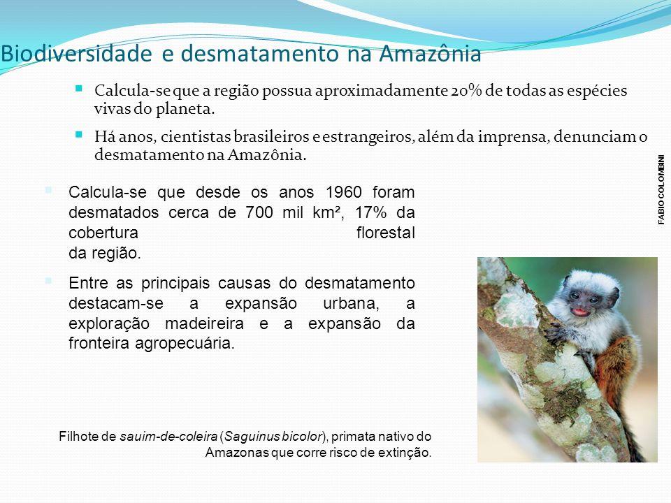 Biodiversidade e desmatamento na Amazônia Calcula-se que a região possua aproximadamente 20% de todas as espécies vivas do planeta. Há anos, cientista