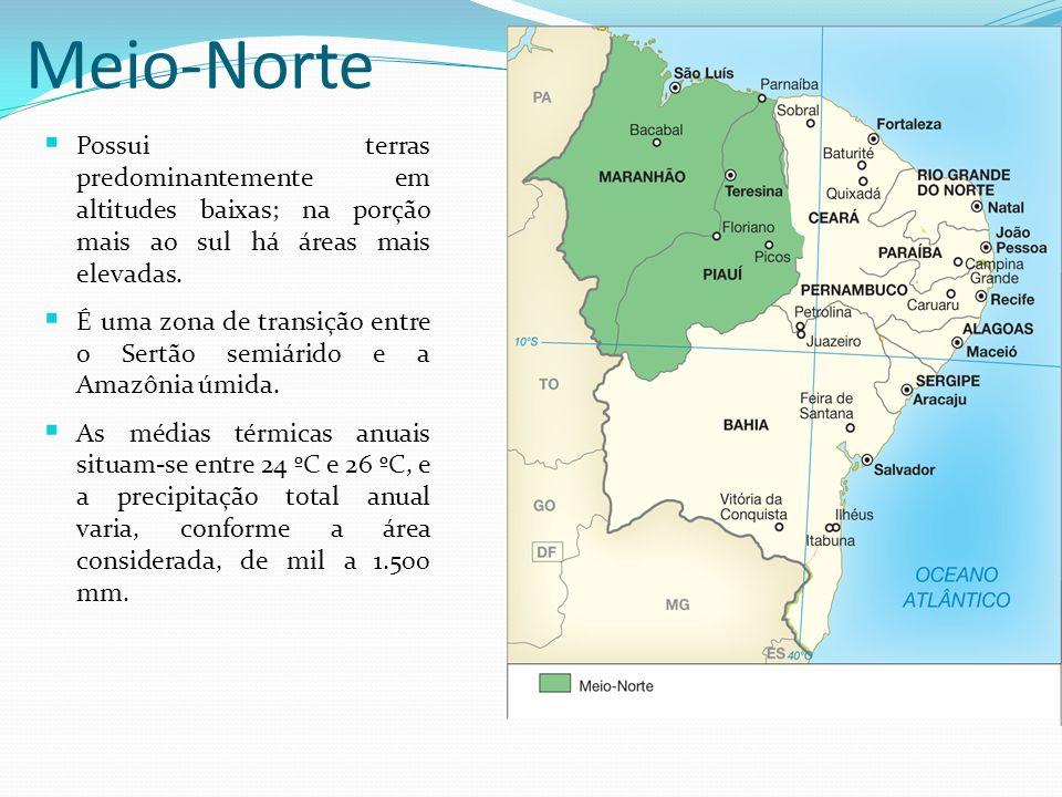 Meio-Norte Possui terras predominantemente em altitudes baixas; na porção mais ao sul há áreas mais elevadas. É uma zona de transição entre o Sertão s