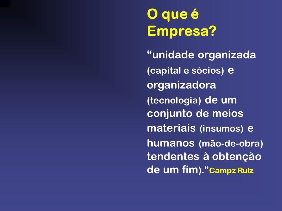 O que é Empresa? unidade organizada (capital e sócios) e organizadora (tecnologia) de um conjunto de meios materiais (insumos) e humanos (mão-de-obra)