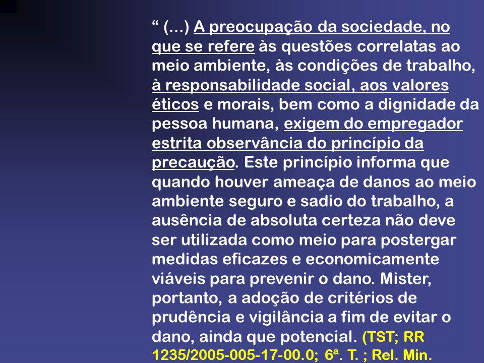 (...) A preocupação da sociedade, no que se refere às questões correlatas ao meio ambiente, às condições de trabalho, à responsabilidade social, aos v