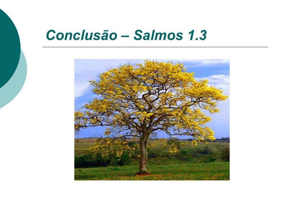 Conclusão – Salmos 1.3