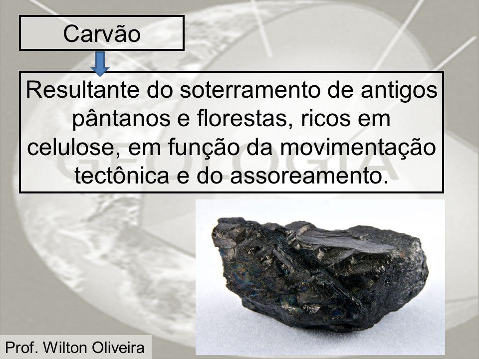 Prof. Wilton Oliveira Carvão Resultante do soterramento de antigos pântanos e florestas, ricos em celulose, em função da movimentação tectônica e do a