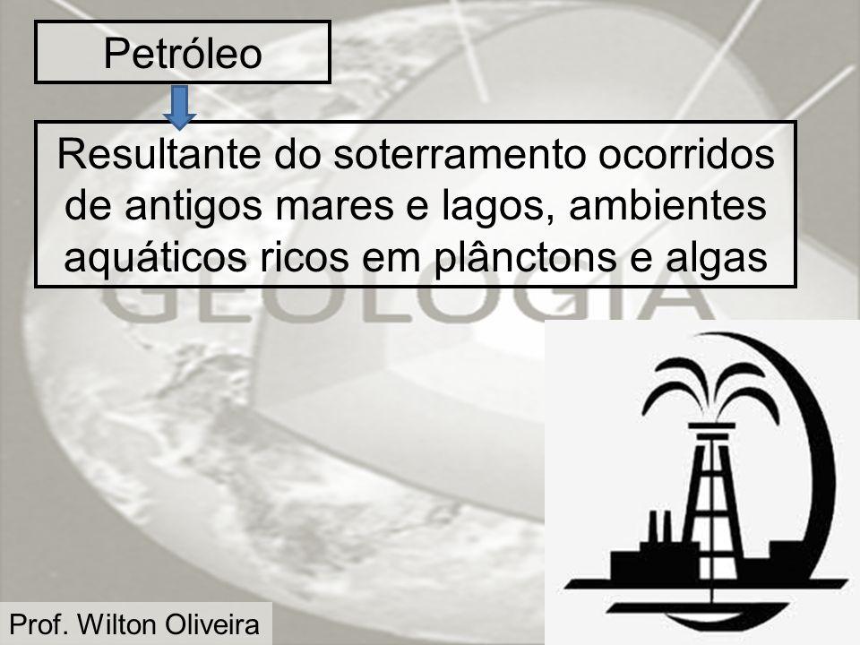 Prof. Wilton Oliveira Petróleo Resultante do soterramento ocorridos de antigos mares e lagos, ambientes aquáticos ricos em plânctons e algas
