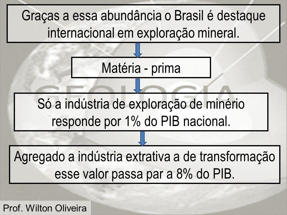 Prof. Wilton Oliveira Graças a essa abundância o Brasil é destaque internacional em exploração mineral. Matéria - prima Só a indústria de exploração d
